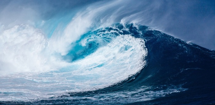 wave-1913559_960_720.jpg