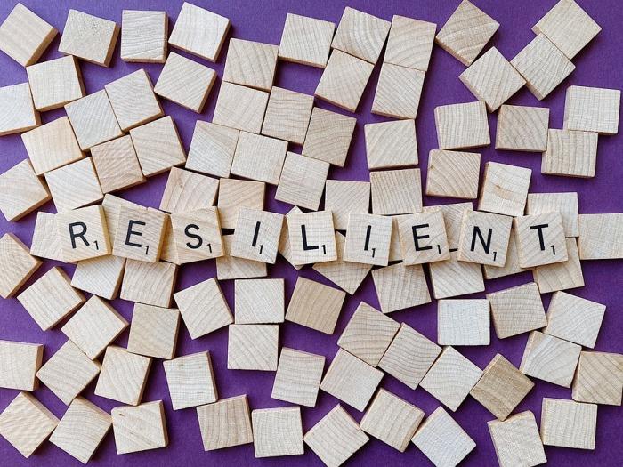 resilient-4899506_960_720.jpg